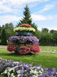 Клумбы с цветами